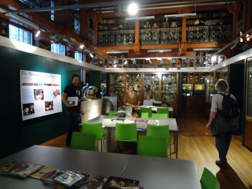museumzoology